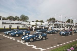 Shelby Daytona Coupes goodwood