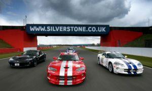 silverstone classic viper